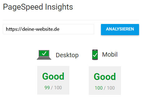 Bei Google PageSpeed Insights 100 Punkte schaffen